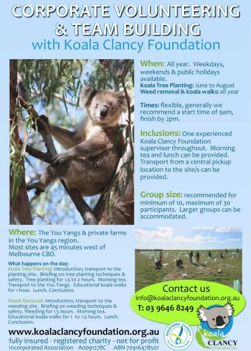 koala tree planting victoria groups