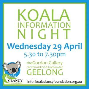 koala information event
