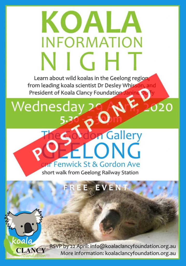 Koala Information Night postponed