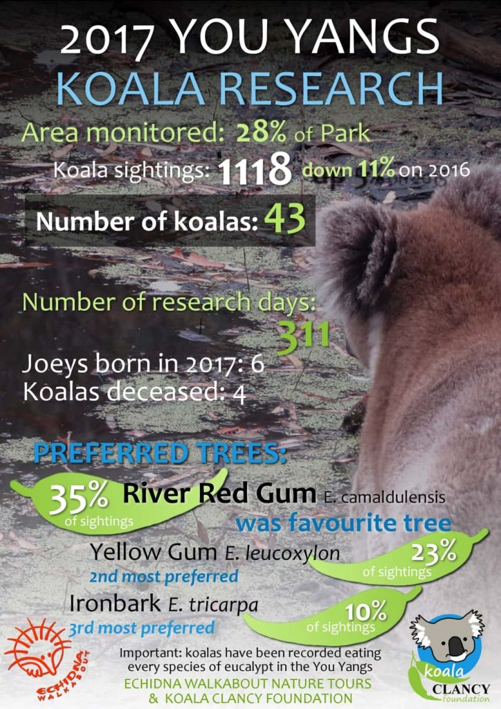 You Yangs koala research 2017 summary