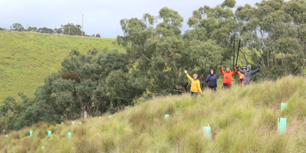 A happy crew of tree planters Australia