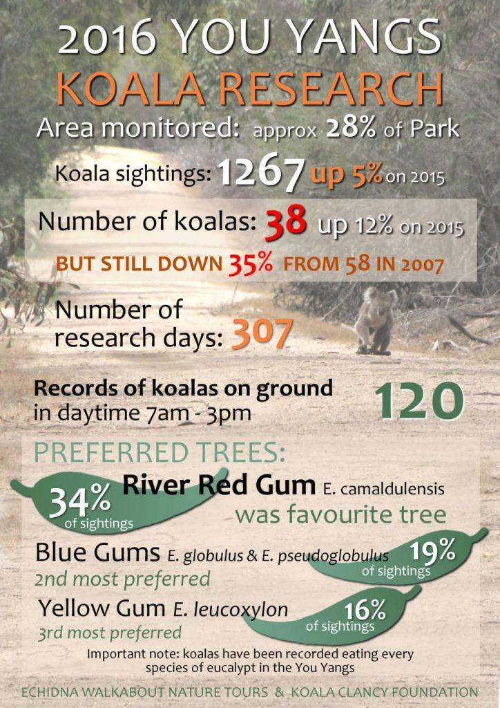 koala research infographic You Yangs 2016