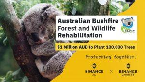 BINANCE grant Koala Clancy